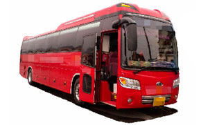 Аренда автобуса Kia-Grand-Bird с водителем