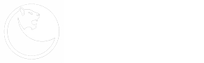 Прокат авто с водителем и без водителя в Краснодаре